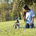 Give Your Cat or Dog Commands