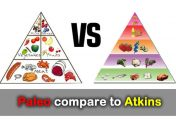 How Does the Paleo Diet Compare to The Atkins Diet